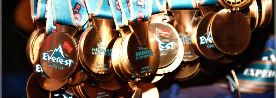 Disney's Animal Kingdom Expedition Everest Challenge Medals